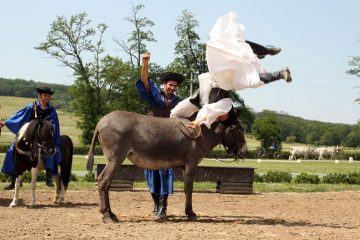 Lázár Equestrian Park, Hungary